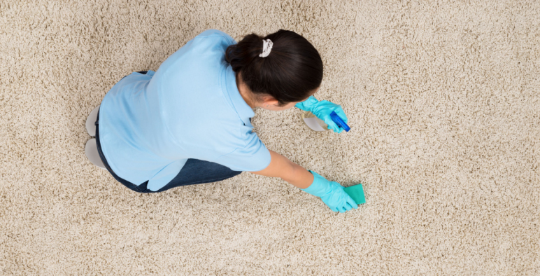 How To Clean Your Carpet Best Proven Techniques
